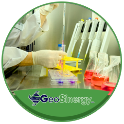 GEOSINERGY-SERVIZI-LABORATORIO